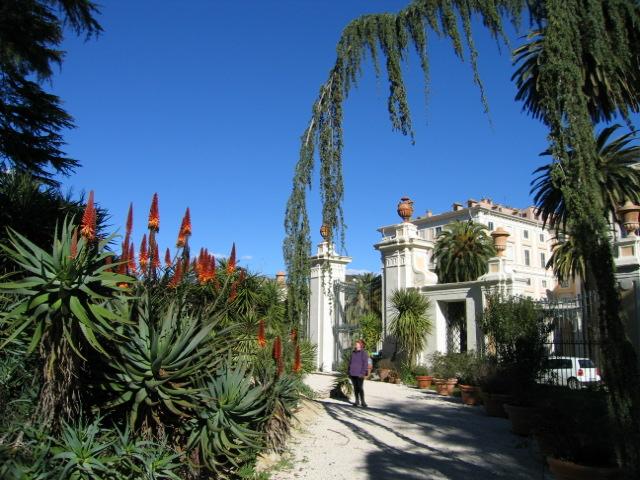 5 Italie, Rome ,Jardin botanique