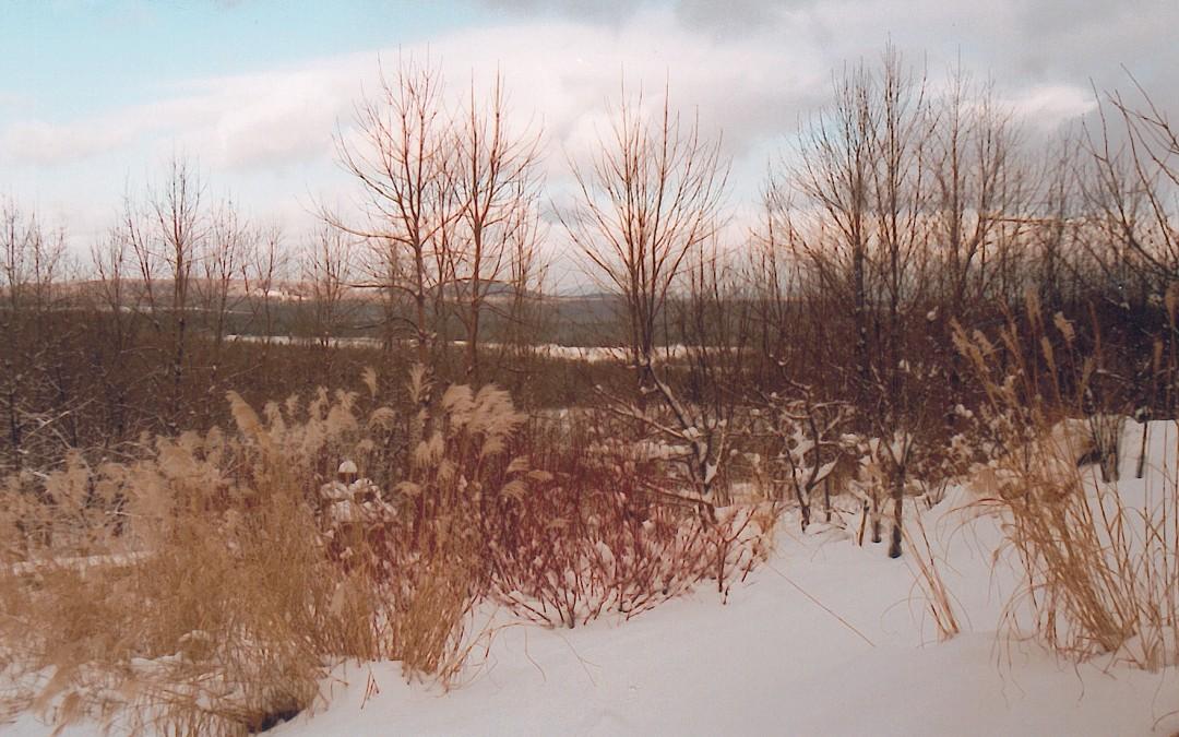 5 Dunham photo hiver 2001 (portique vers Mtl)