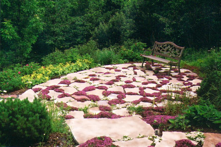 9 Dunham  portique (patio 2) 23 juin 2000 ReFAITe